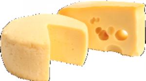 cheesycheese